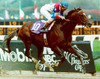 Cigar_breeders_cup